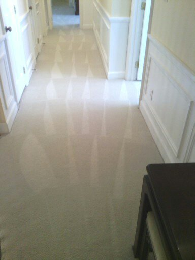Reliable Carpet Cleaning Gastonia North Carolina